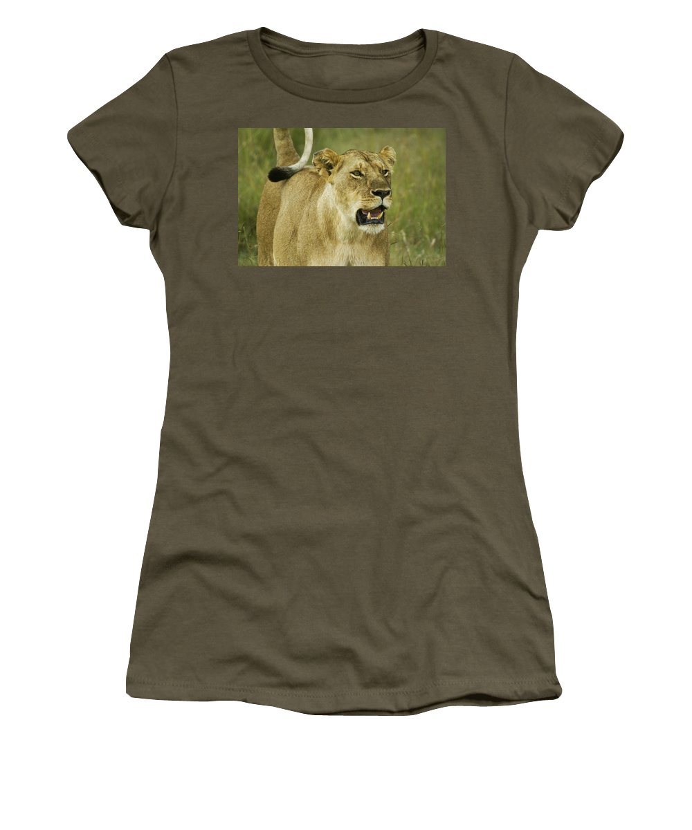 Africa Women's T-Shirt featuring the photograph The Tail Rules by Michele Burgess
