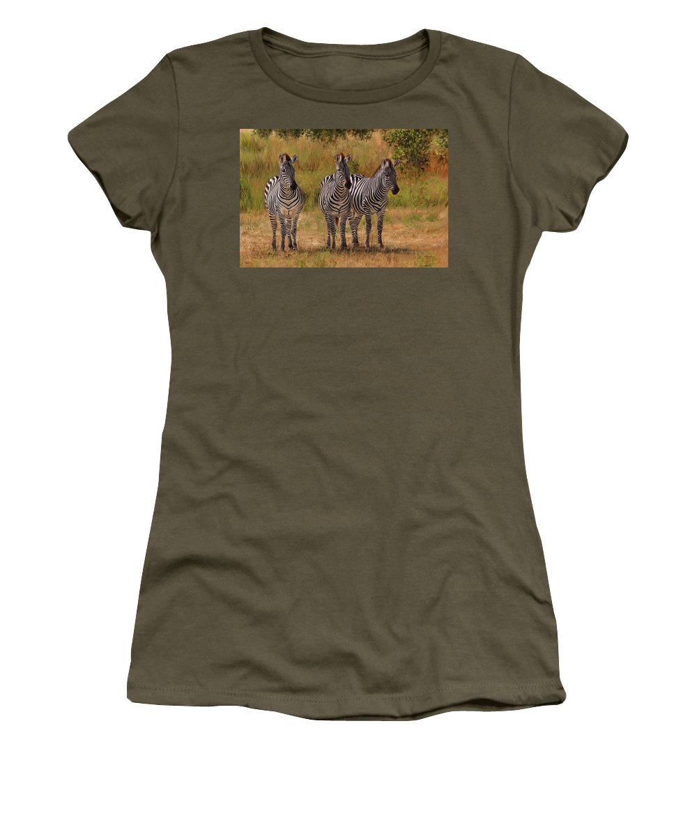 Zebra Women's T-Shirt featuring the painting Three Amigos by David Stribbling