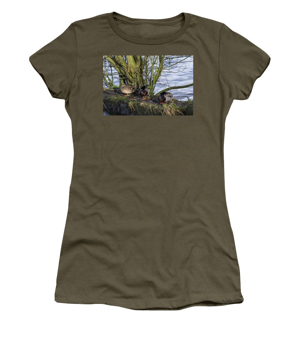 Duck Women's T-Shirt (Athletic Fit) featuring the photograph Three In A Row by Spikey Mouse Photography