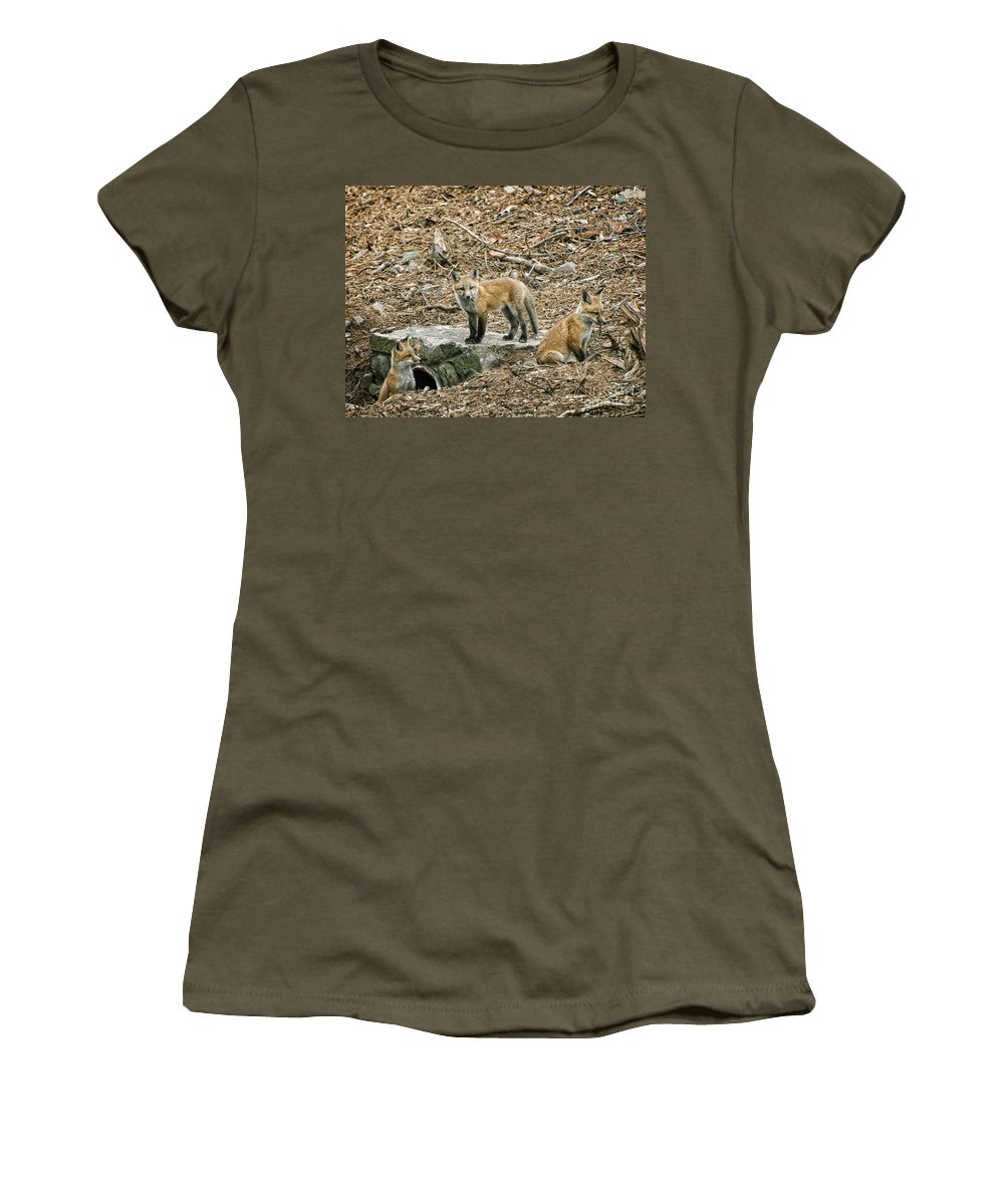 Foxes Women's T-Shirt (Athletic Fit) featuring the photograph Three Kits by Claudia Kuhn