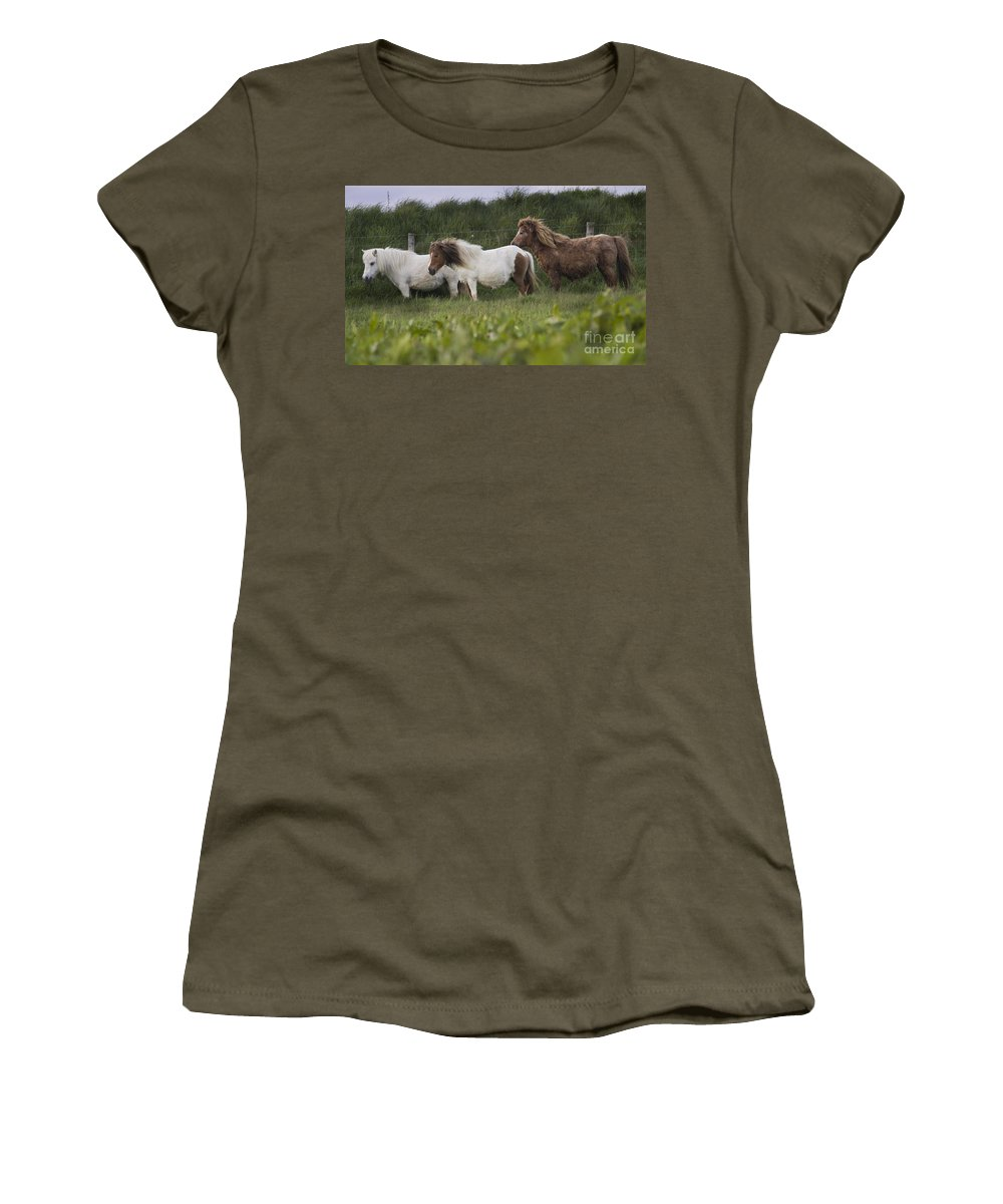 Shetland Women's T-Shirt (Athletic Fit) featuring the photograph Three Ponies by Angel Ciesniarska