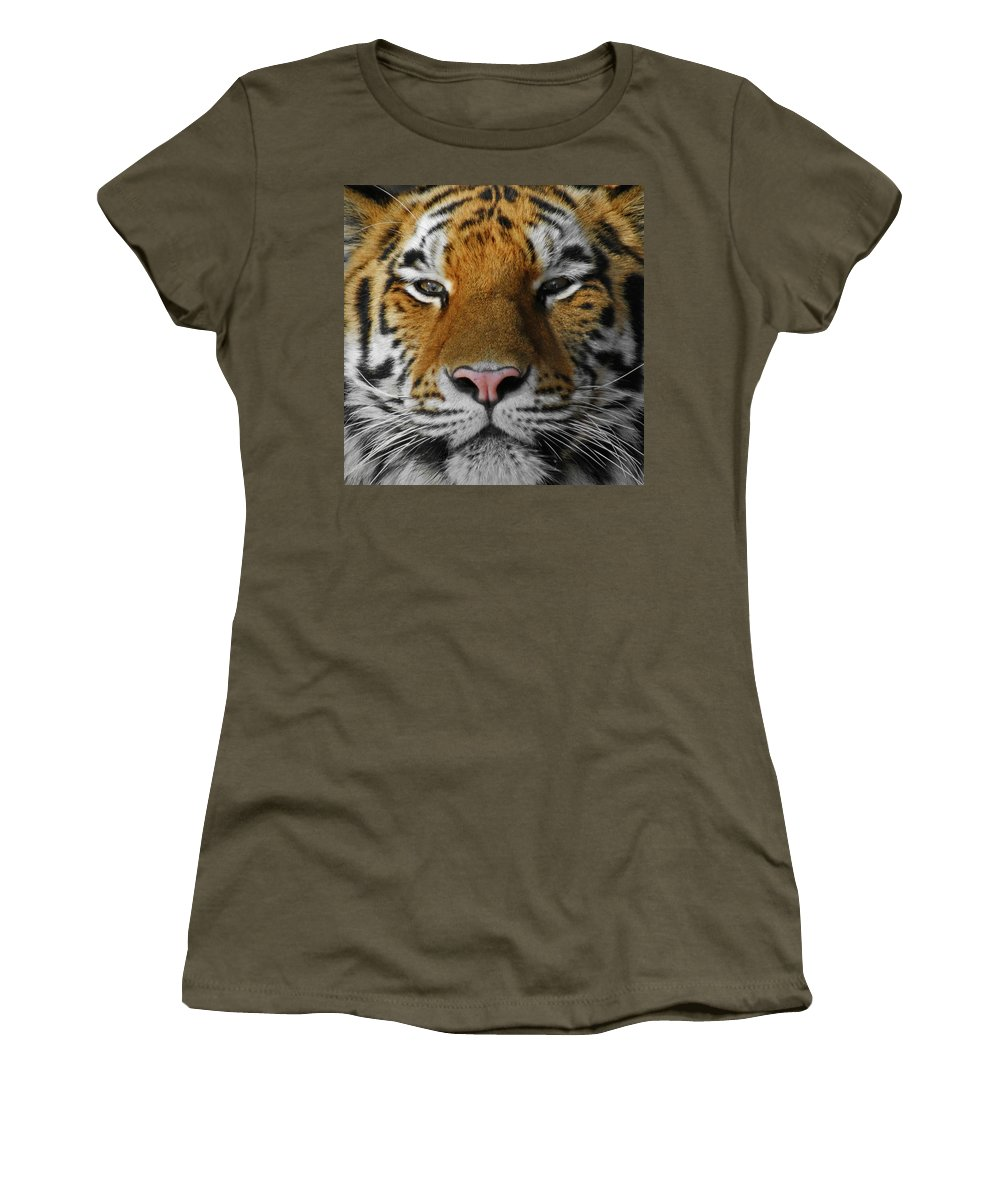 Tiger Women's T-Shirt featuring the photograph Tiger 1 by Ernie Echols