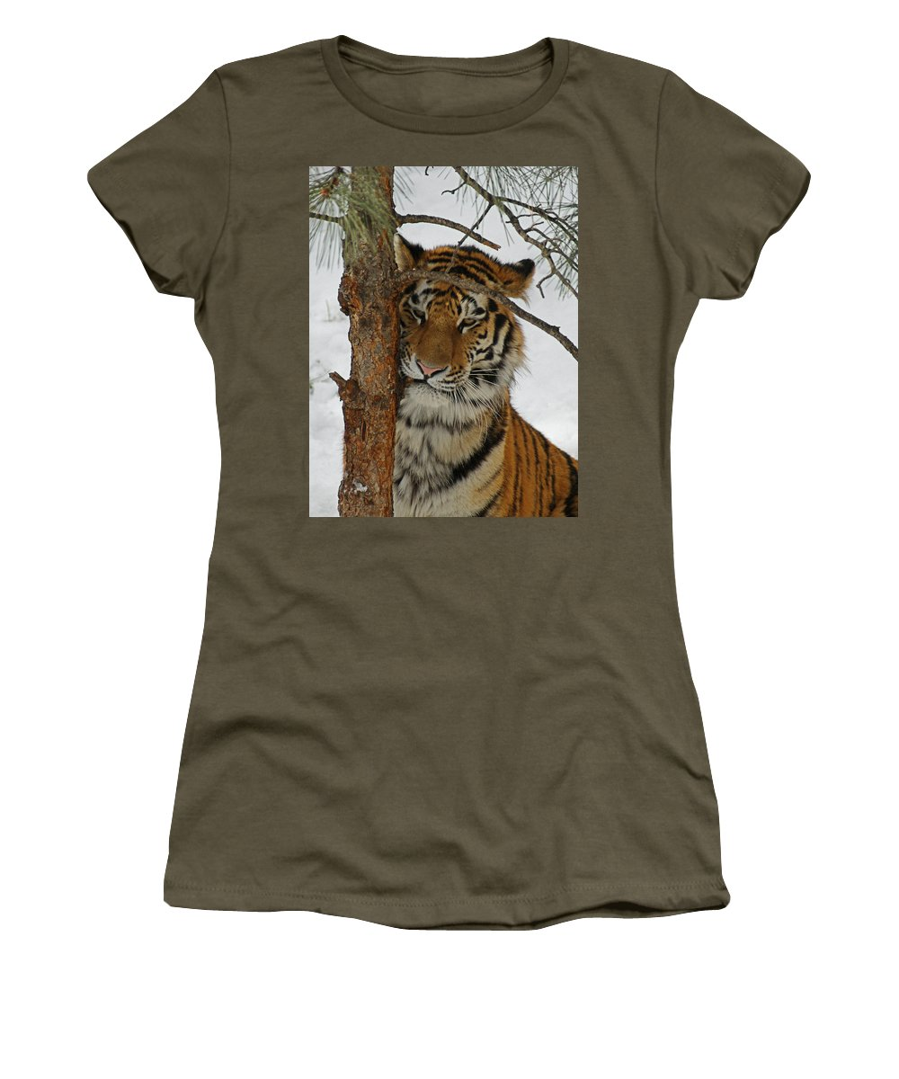 Tiger Women's T-Shirt featuring the photograph Tiger 2 by Ernie Echols