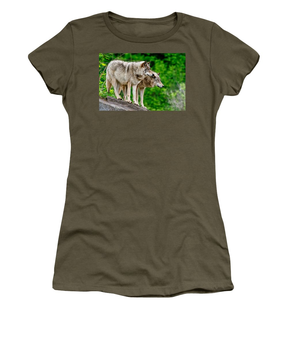 Timber Wolf Women's T-Shirt featuring the photograph Timber Wolf Pictures 191 by Wolves Only