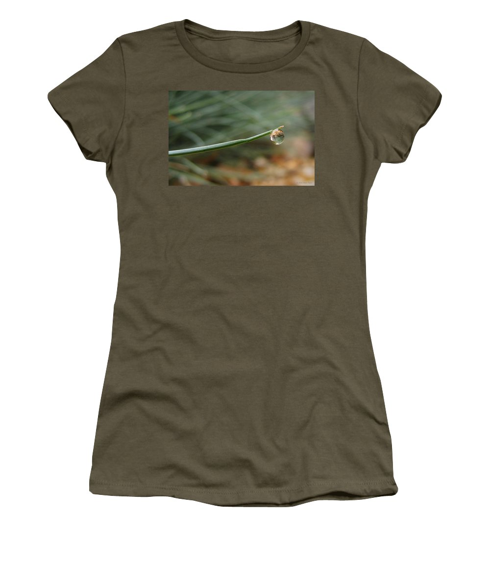 Nature Women's T-Shirt featuring the photograph Tiny Morning Dew by Matt Taylor