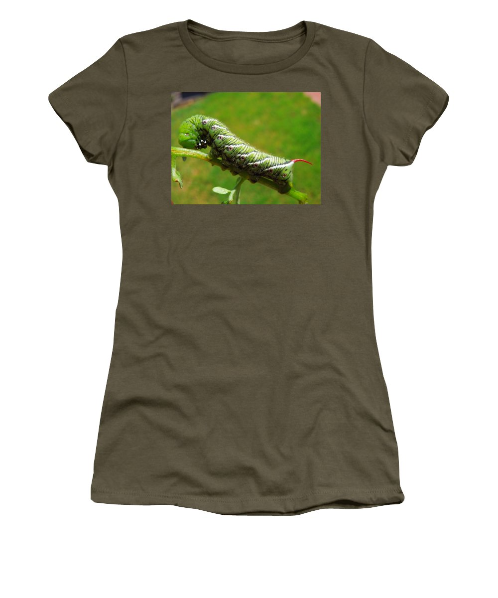 Tomato Horn Worm Women's T-Shirt featuring the photograph Tomato Horn Worm Caterpillar by Donna Jackson