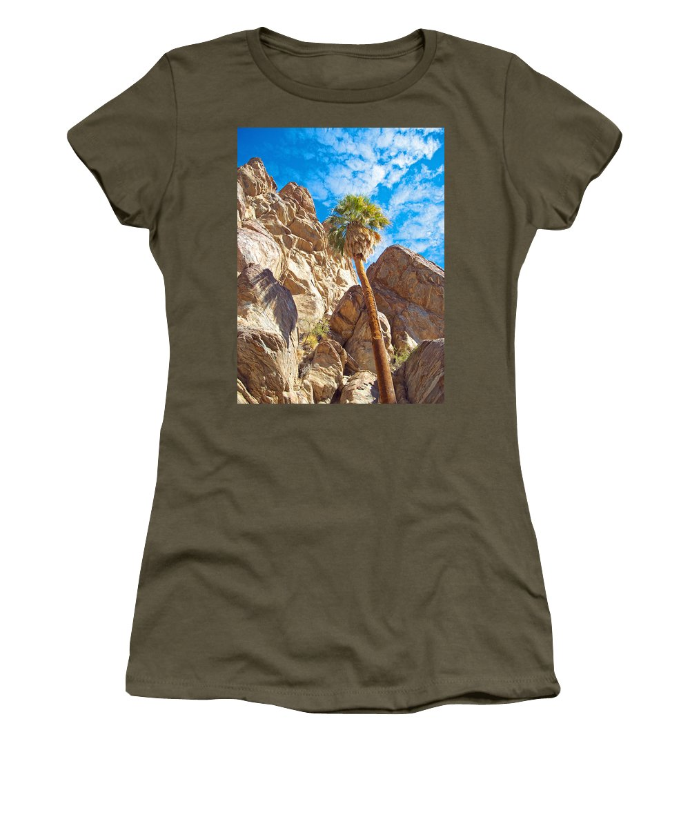 Top Of A Palm Near Top Of Andreas Canyon In Indian Canyons Women's T-Shirt featuring the photograph Top Of A Palm Near Top Of Andreas Canyon-ca by Ruth Hager