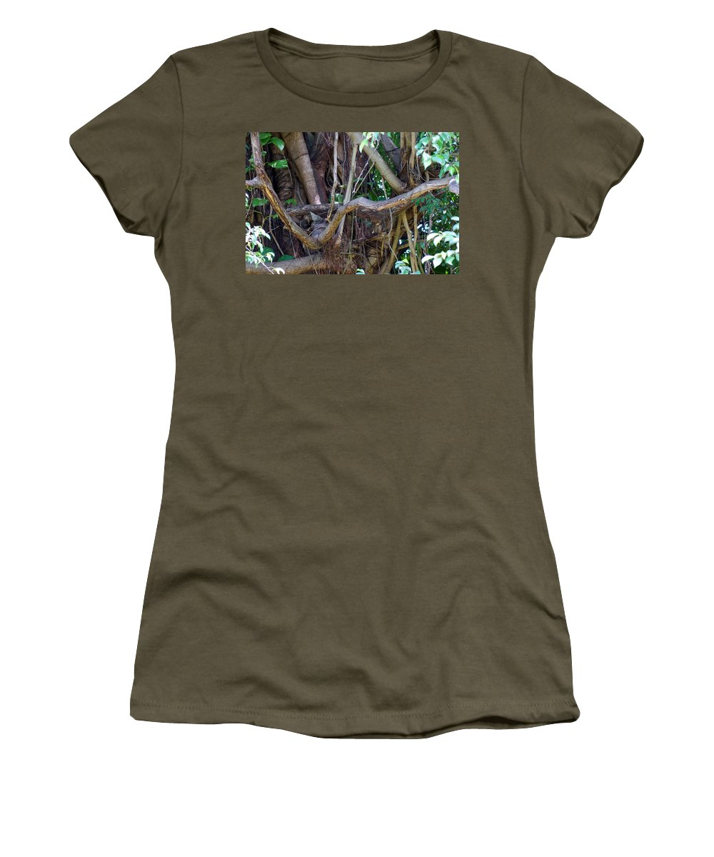 Tree Women's T-Shirt featuring the photograph Tree by Rafael Salazar