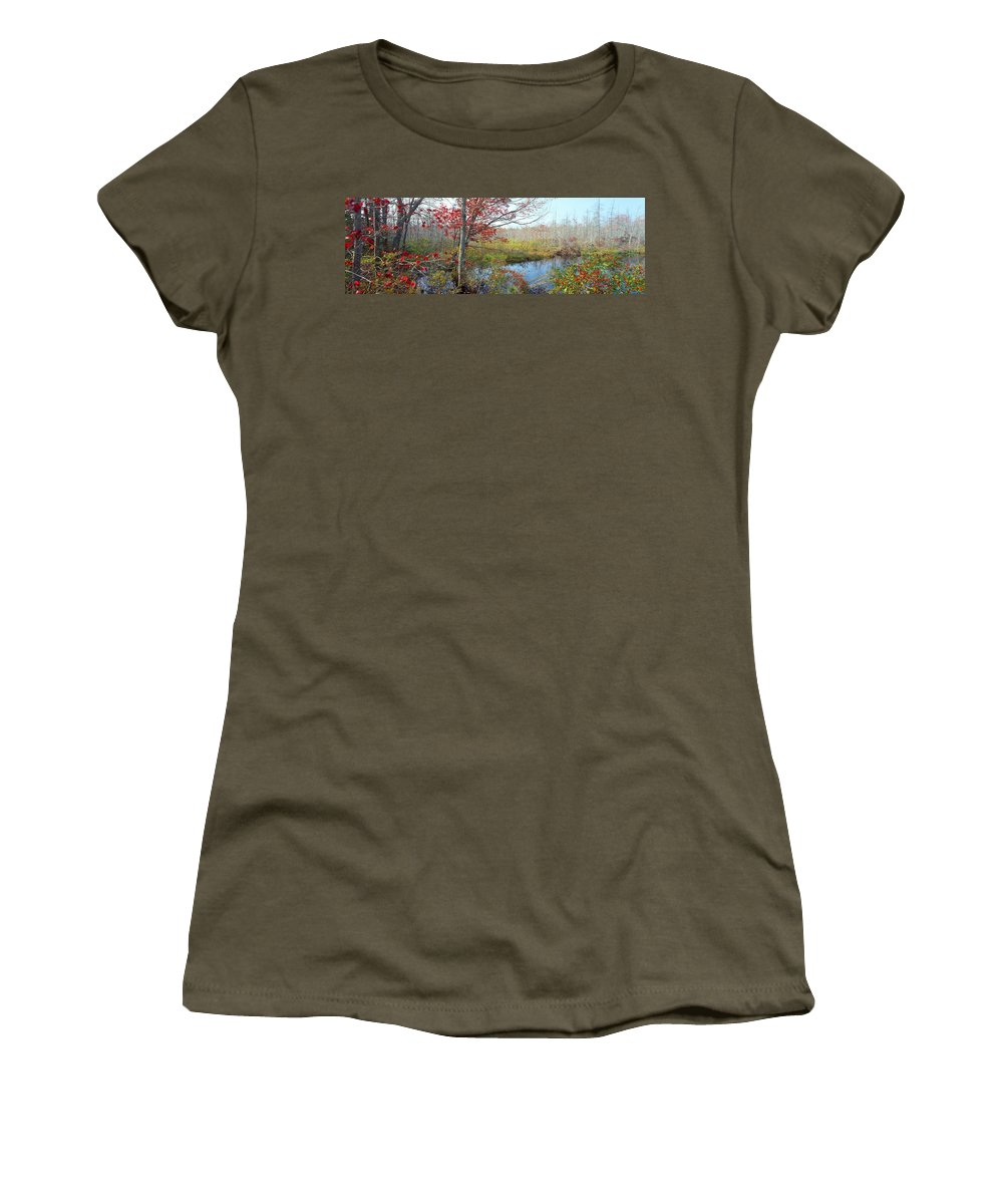 Photography Women's T-Shirt featuring the photograph Trees In A Forest, Damariscotta by Panoramic Images