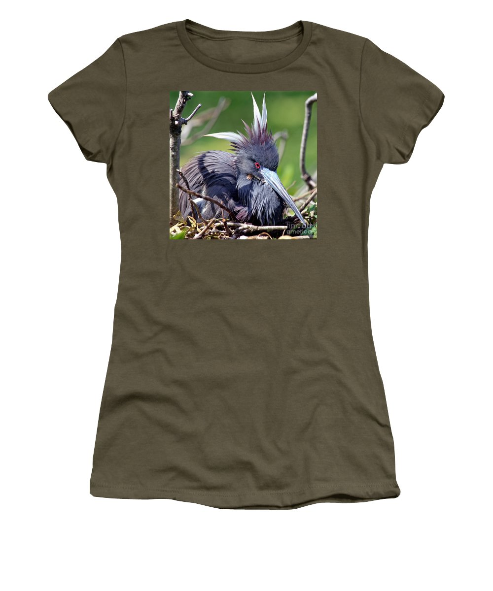 Animal Women's T-Shirt featuring the photograph Tricolored Heron Female Incubating Eggs by Millard H. Sharp