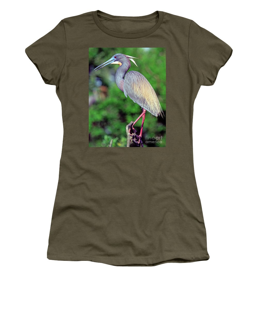 Animal Women's T-Shirt featuring the photograph Tricolored Heron In Breeding Plumage by Millard H. Sharp