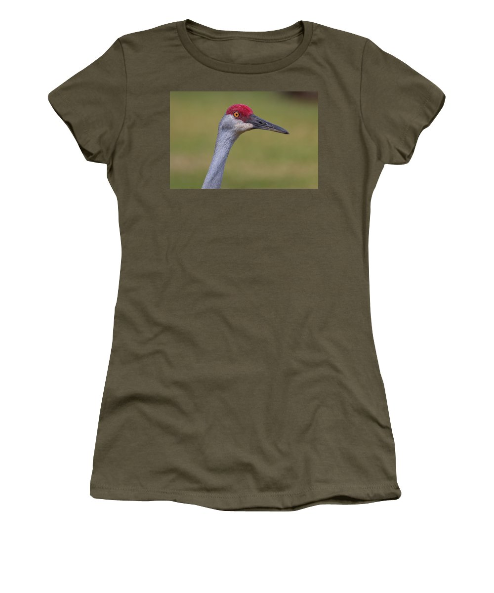 Sandhill Crane Women's T-Shirt (Athletic Fit) featuring the photograph Up Close With A Sandhill Crane by John M Bailey