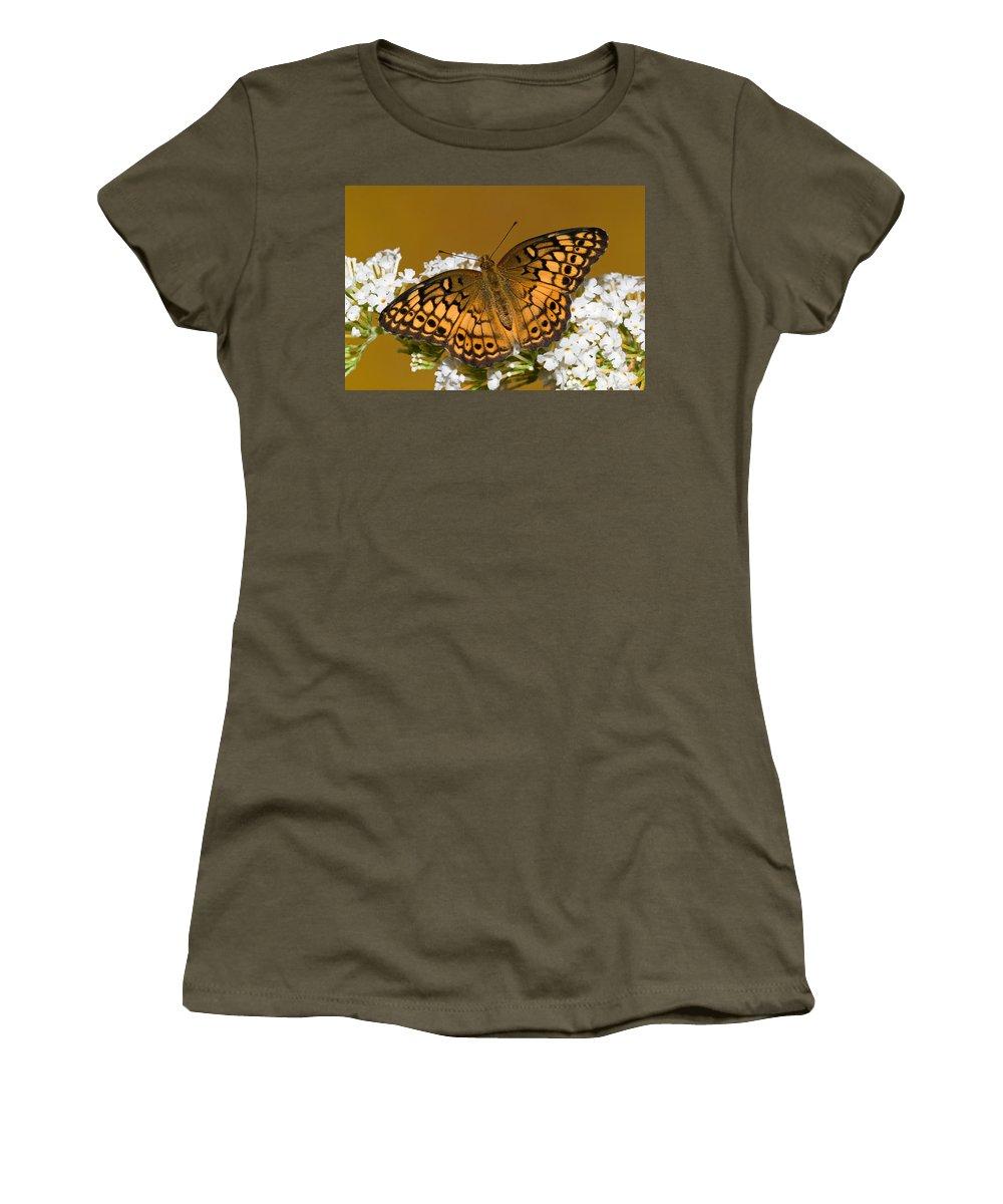 Variegated Fritillary Butterfly Women's T-Shirt featuring the photograph Variegated Fritillary by Millard H. Sharp