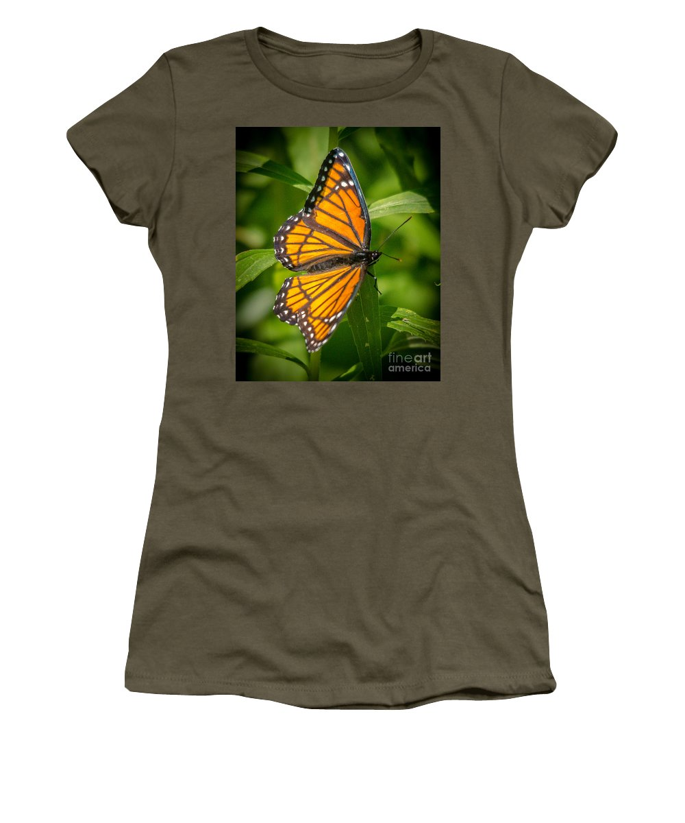 Viceroy Butterfly Women's T-Shirt featuring the photograph Viceroy by Cheryl Baxter