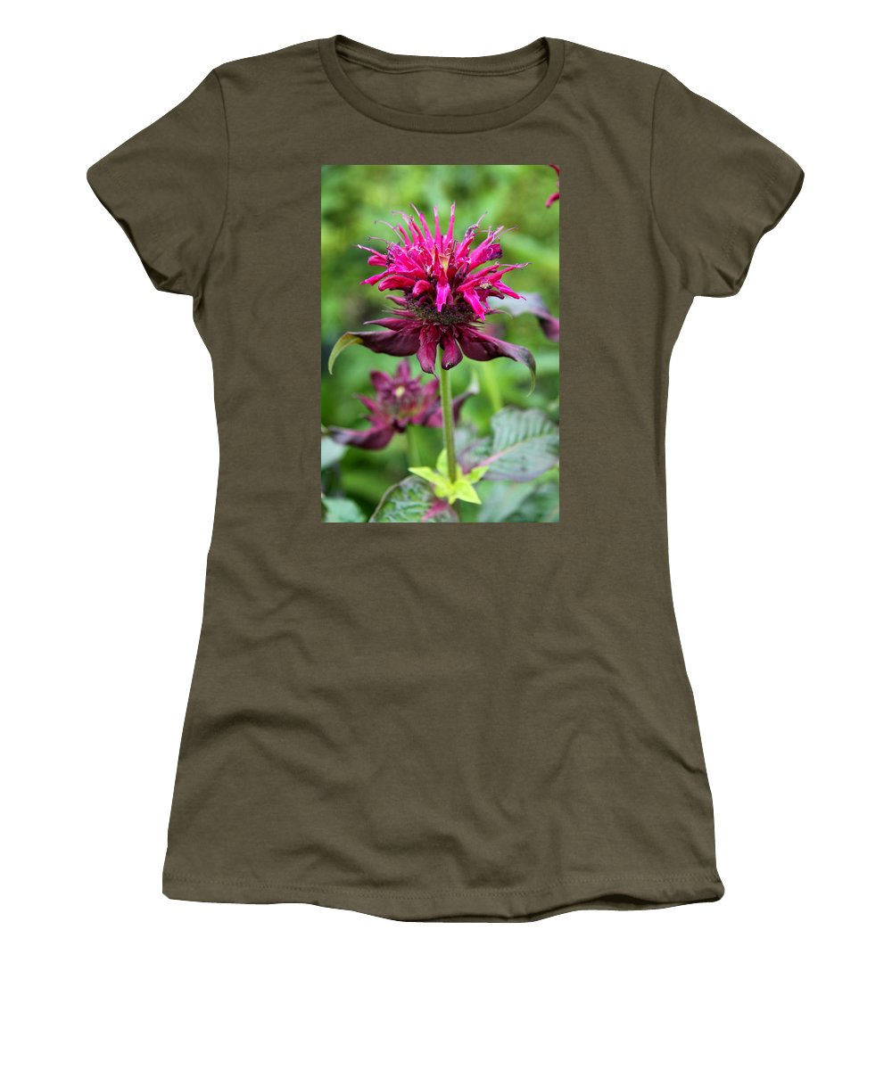 Flower Women's T-Shirt featuring the photograph Violet Eyecatcher by Christiane Schulze Art And Photography