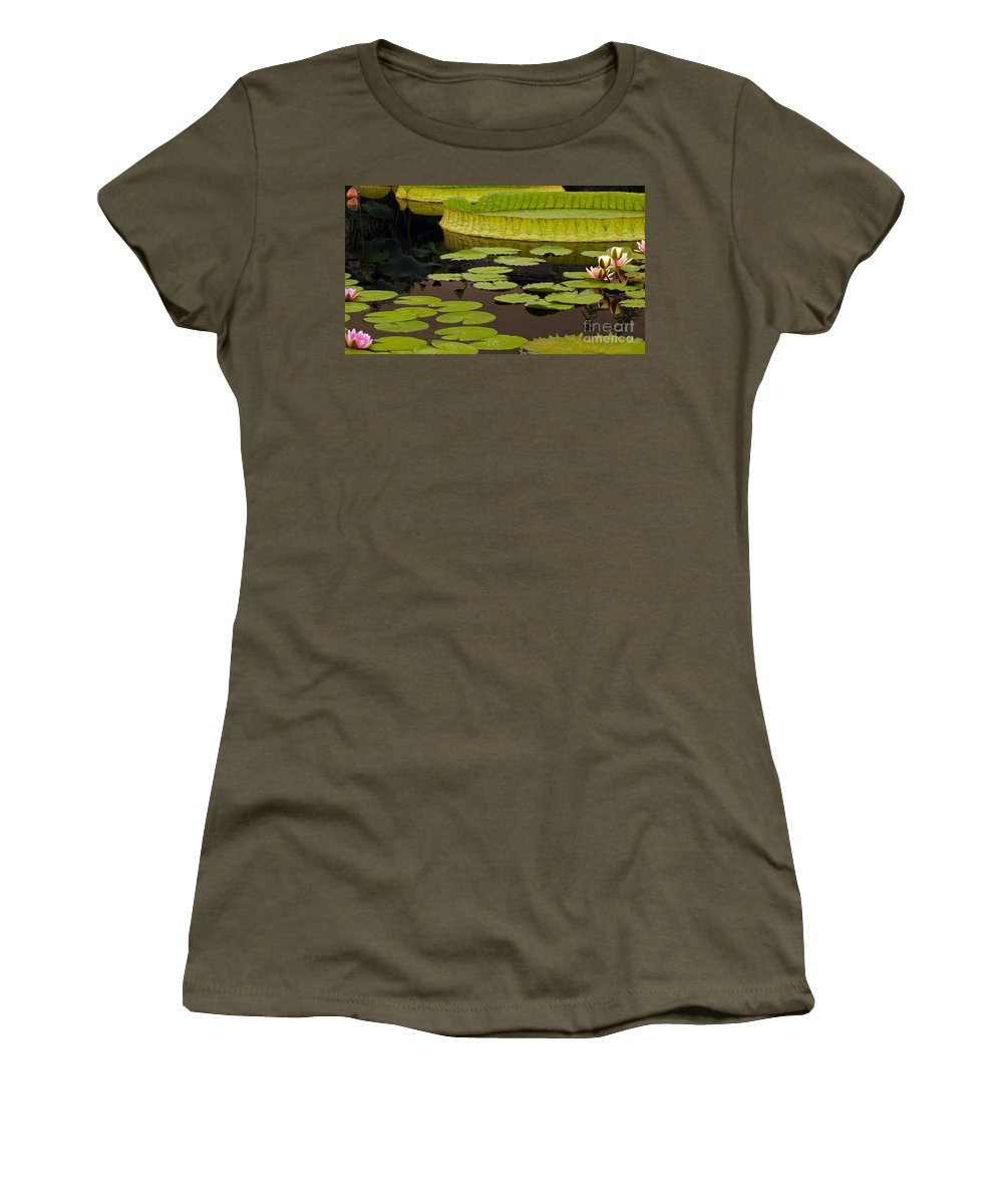 Hardy Waterlilies And Water Platters Women's T-Shirt featuring the photograph Waterlily Charm by Byron Varvarigos