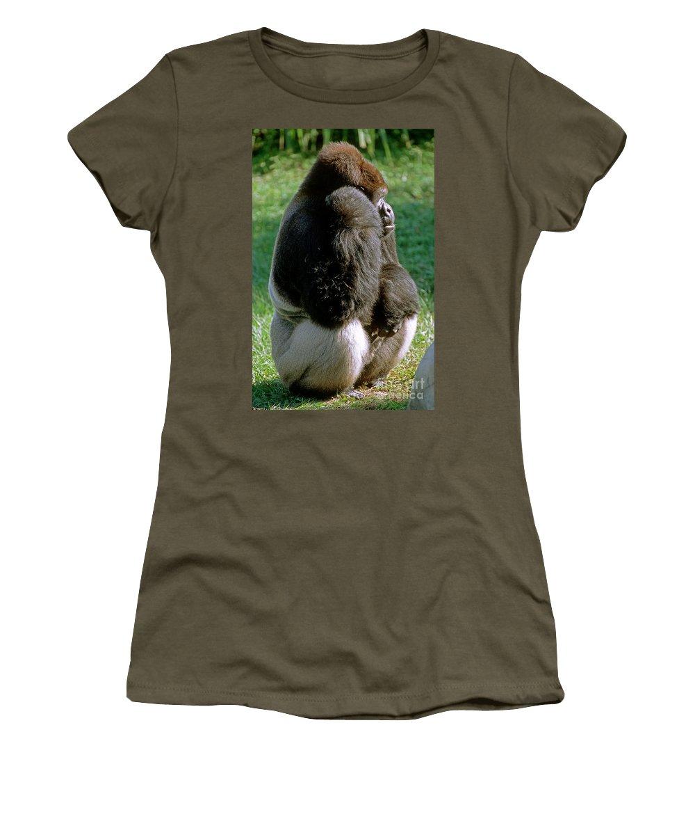 Animal Women's T-Shirt featuring the photograph Western Lowland Gorilla Silverback by Millard H. Sharp