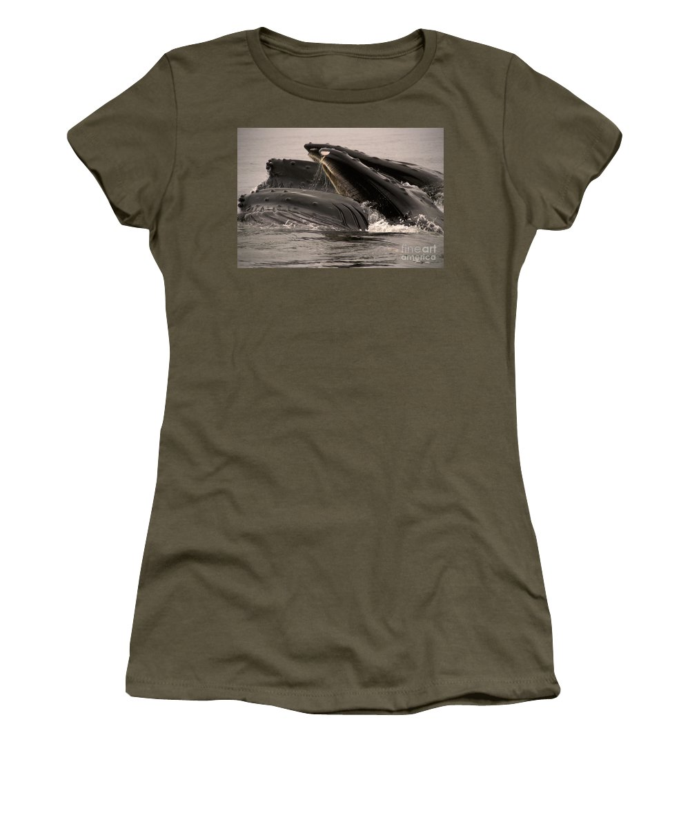 Animal Women's T-Shirt featuring the photograph Whales Feeding by Ron Sanford