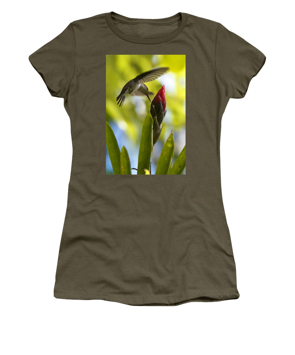 Honduras Women's T-Shirt featuring the photograph White-bellied Emerald by David Beebe