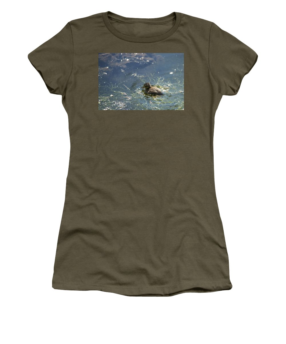 Spring Women's T-Shirt featuring the photograph Wild One by Edward Peterson