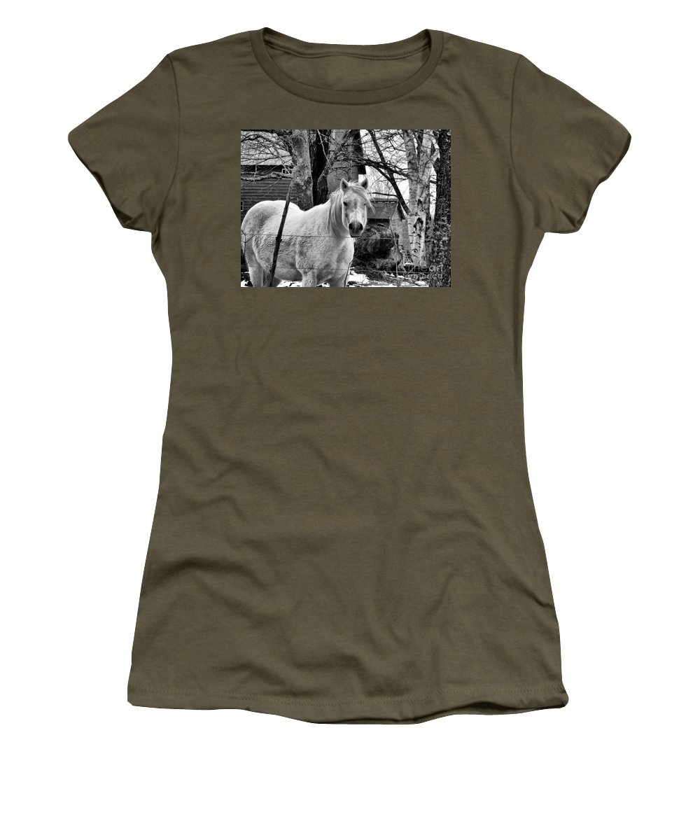 Horse Women's T-Shirt featuring the photograph Winking by Nancie DeMellia