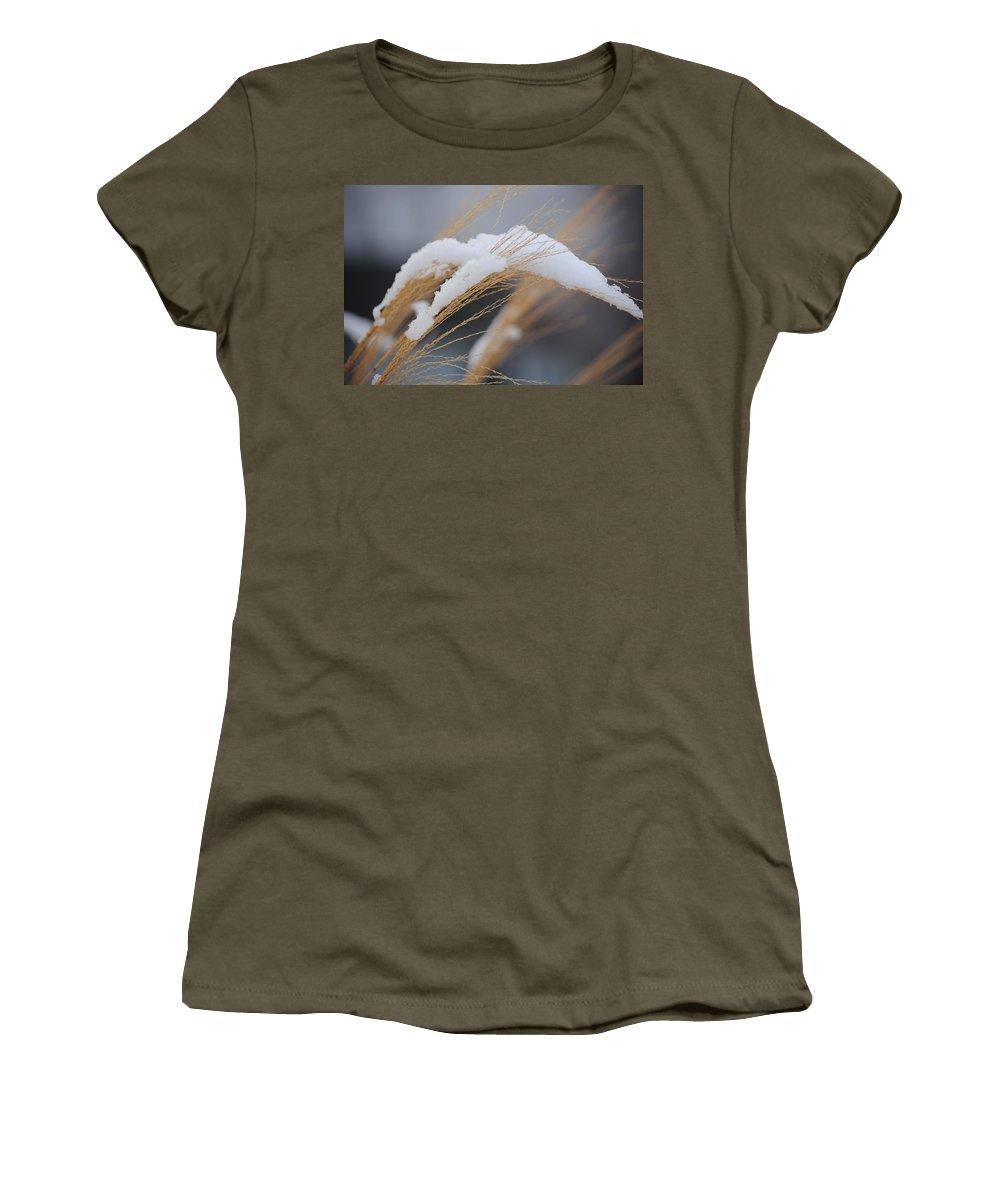 Grasses Women's T-Shirt featuring the photograph Winter Grasses IIi by Karen Lambert