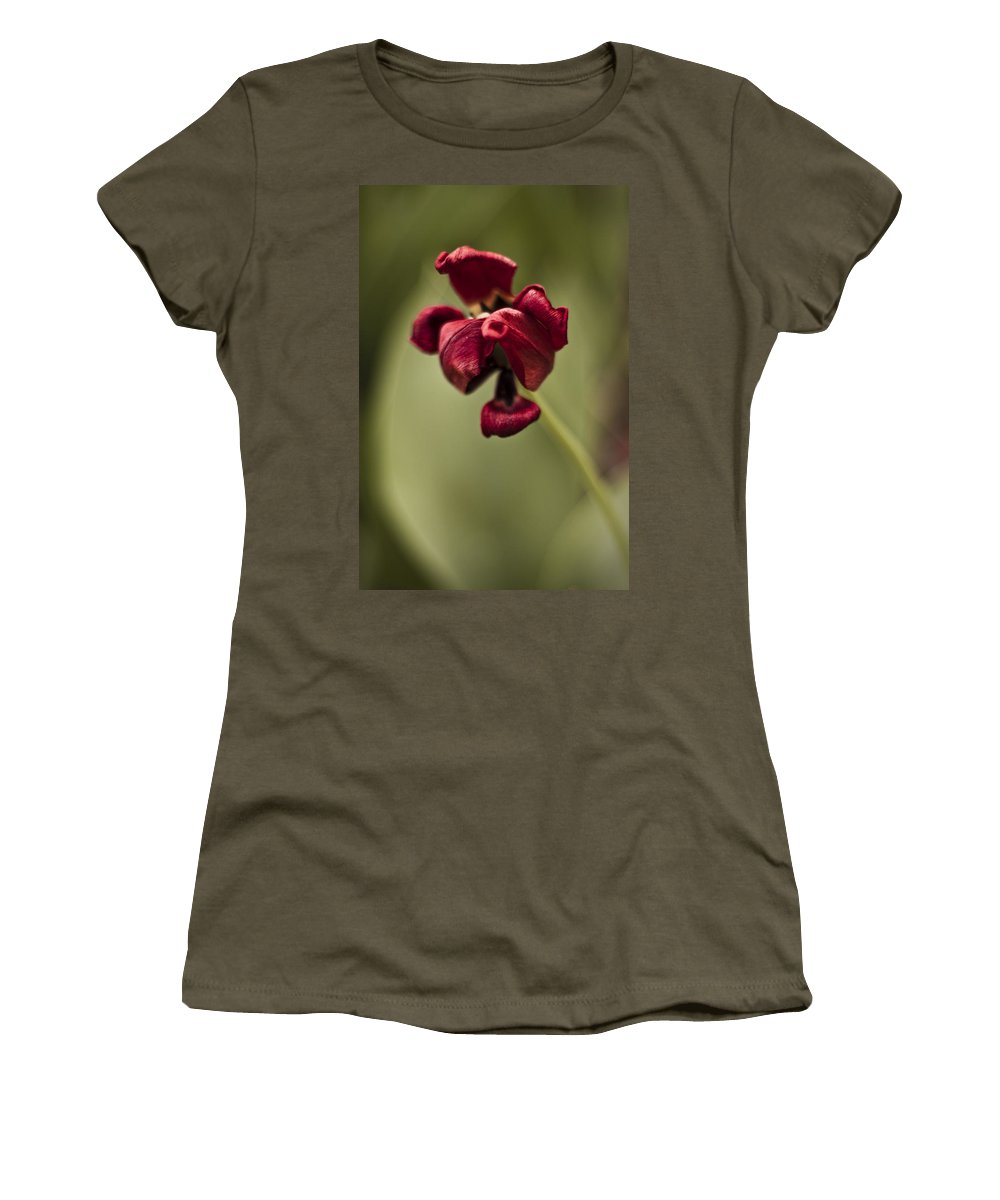 3scape Photos Women's T-Shirt (Athletic Fit) featuring the photograph Withered Tulip by Adam Romanowicz