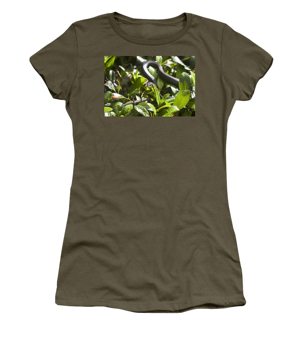 Black Snake Women's T-Shirt featuring the photograph You Lookin At Me by Rich Franco