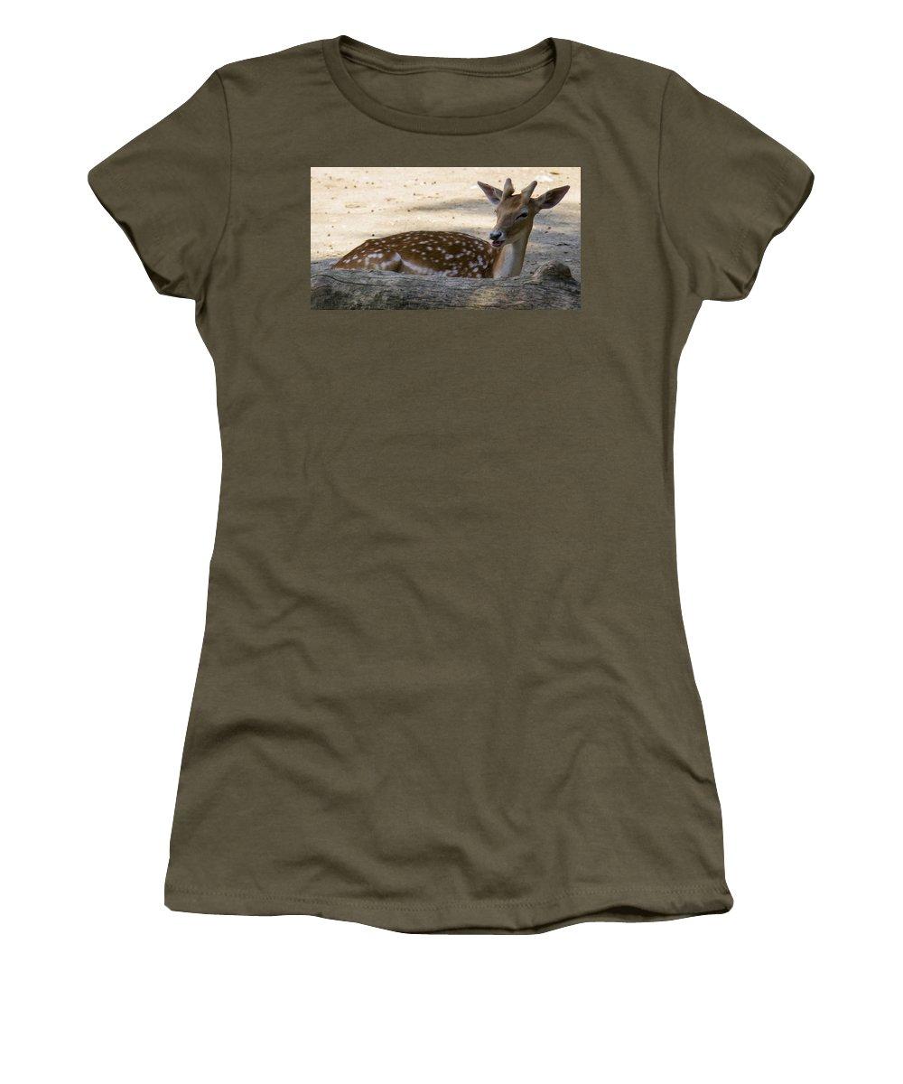 Young Deer Women's T-Shirt featuring the photograph Young Deer by Sotiris Filippou