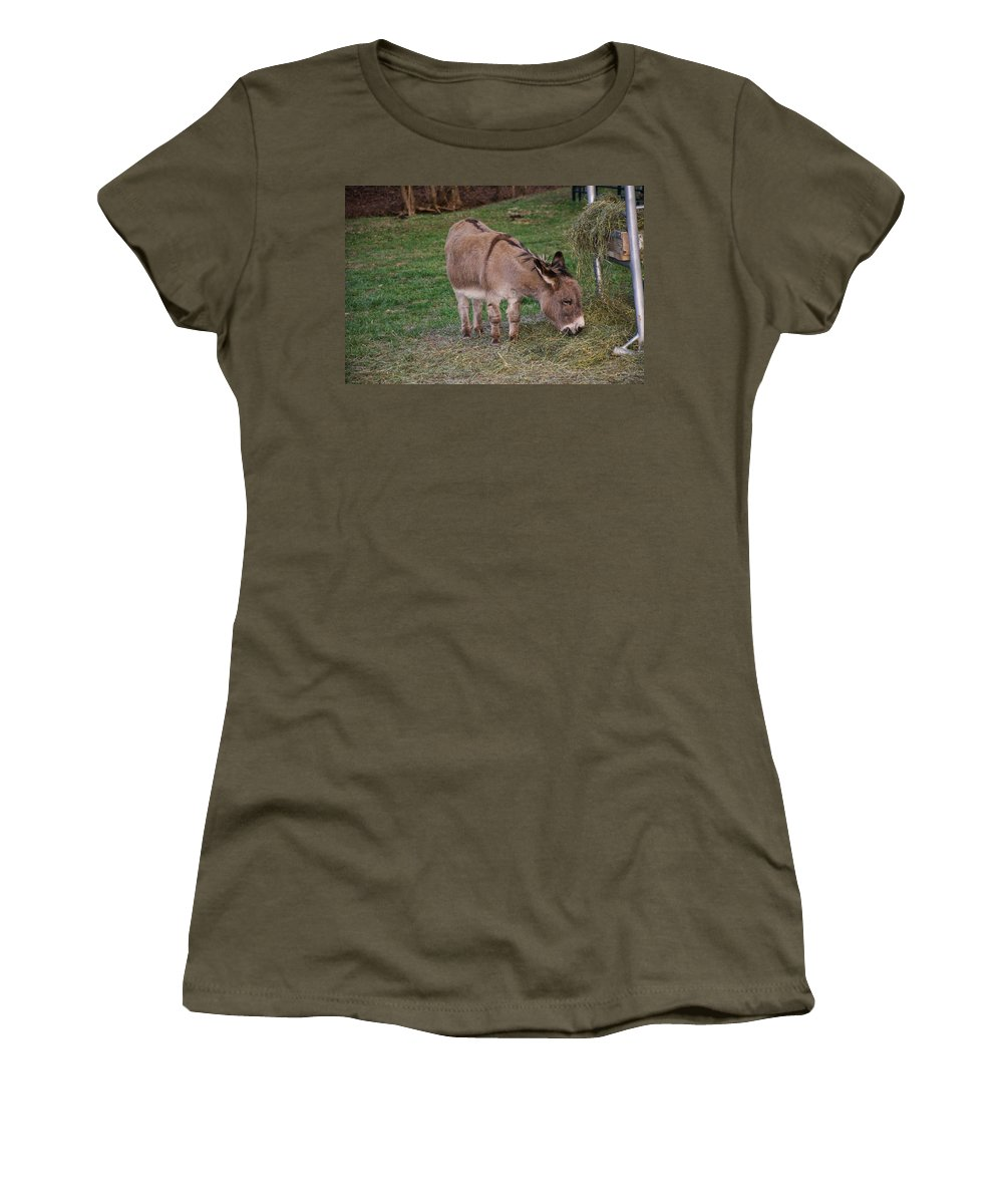 Donkey Women's T-Shirt featuring the photograph Young Donkey Eating by Chris Flees