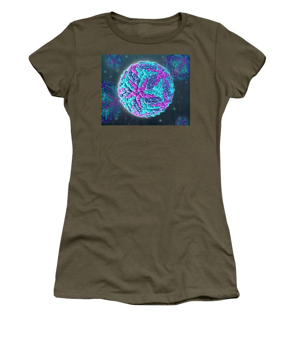 Model Women's T-Shirt featuring the photograph Zika Virus, Molecular Model by Evan Oto