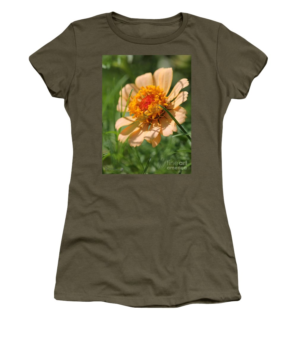 Mccombie Women's T-Shirt featuring the photograph Zinnia From The Candy Mix by J McCombie