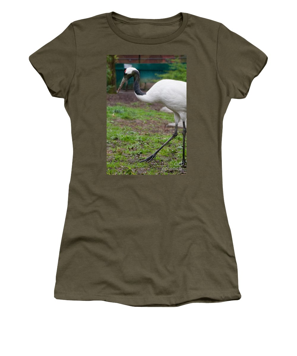 Animals Women's T-Shirt featuring the digital art Red Crowned Crane by Carol Ailles