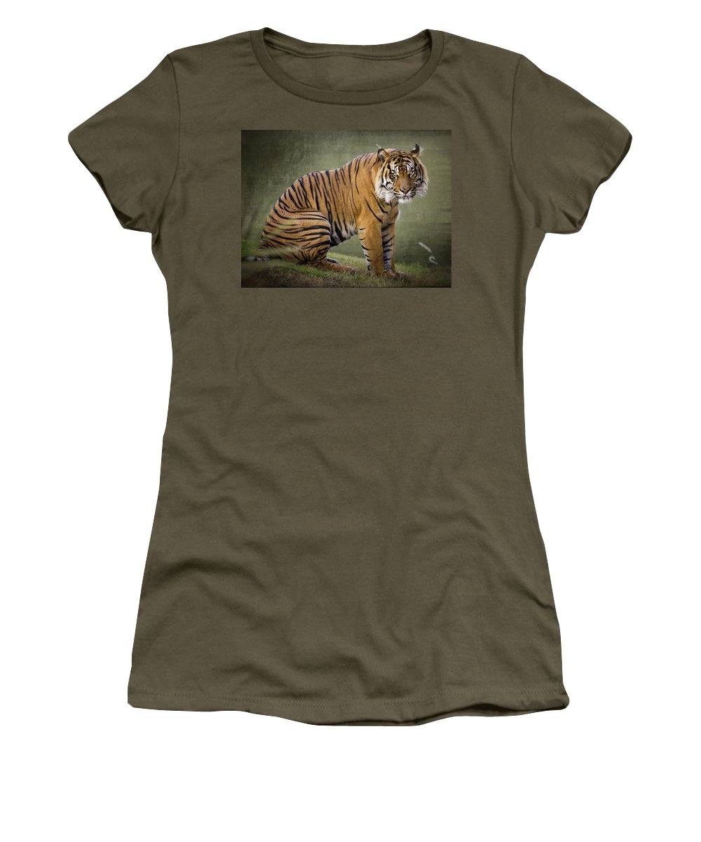 Sumatran Tiger Women's T-Shirt featuring the photograph The Sumatran Tiger by Saija Lehtonen