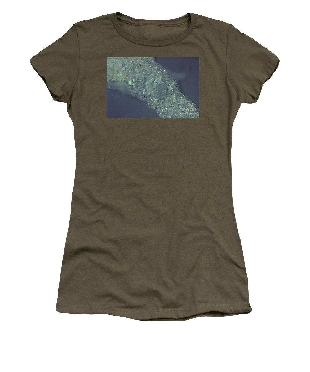 Science Women's T-Shirt featuring the photograph Amoeba Proteus Lm by M. I. Walker