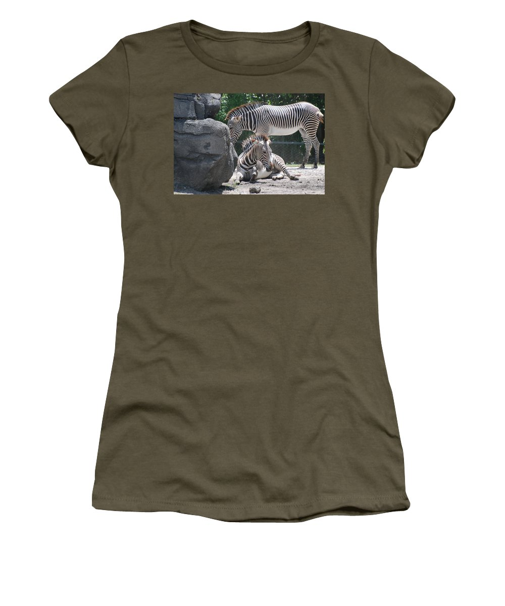 Animal Women's T-Shirt featuring the photograph Zebras by Rob Hans