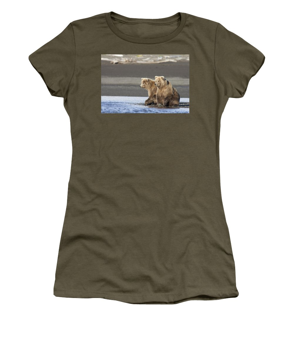 Mp Women's T-Shirt featuring the photograph Grizzly Bear Ursus Arctos Horribilis by Matthias Breiter