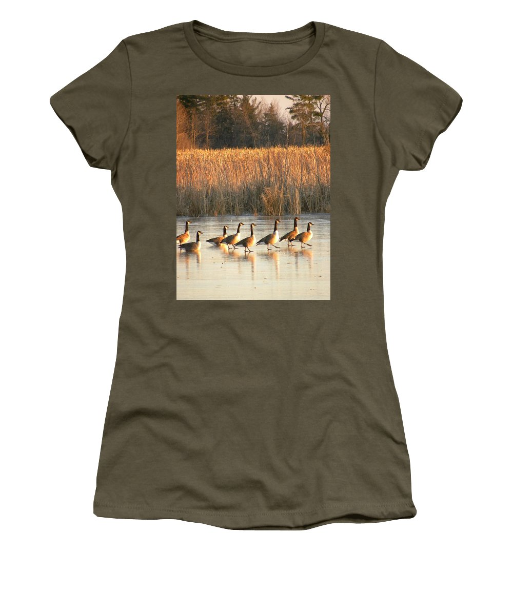Canada Geese Women's T-Shirt featuring the photograph A Walk In The Park by Peggy McDonald