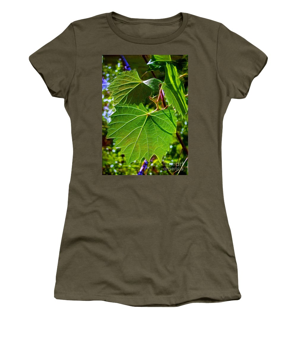 Leaves Women's T-Shirt (Athletic Fit) featuring the photograph Backlit Leaves by Judi Bagwell