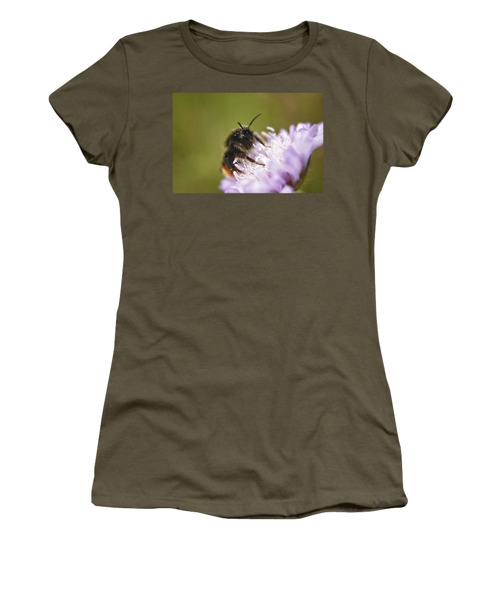 Bee Women's T-Shirt featuring the photograph Bee In Pollen by Vicki Field
