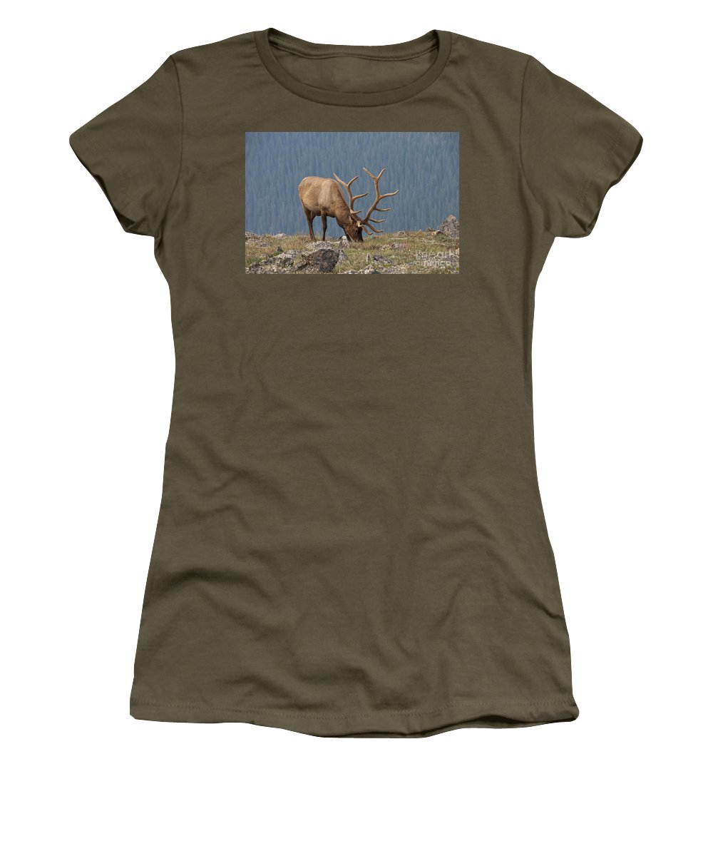 Rack Women's T-Shirt featuring the photograph Big Boy by David Arment