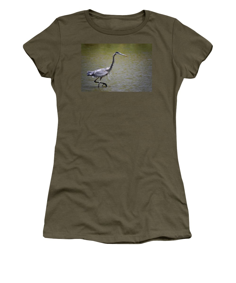 Great Blue Heron Women's T-Shirt (Athletic Fit) featuring the photograph Blue Heron On The Hunt by Saija Lehtonen
