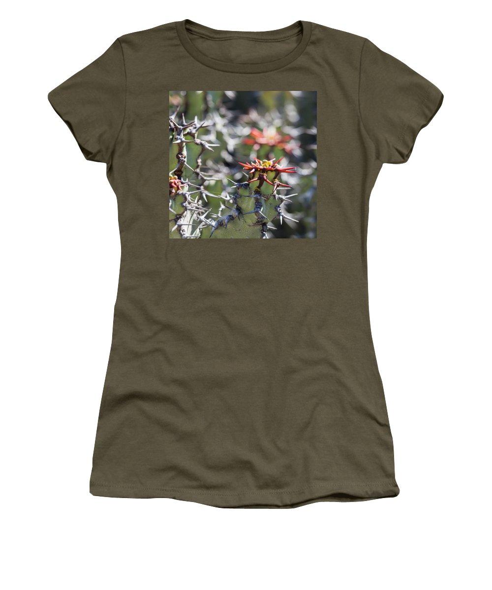 Ralf Women's T-Shirt featuring the photograph Cactus by Ralf Kaiser