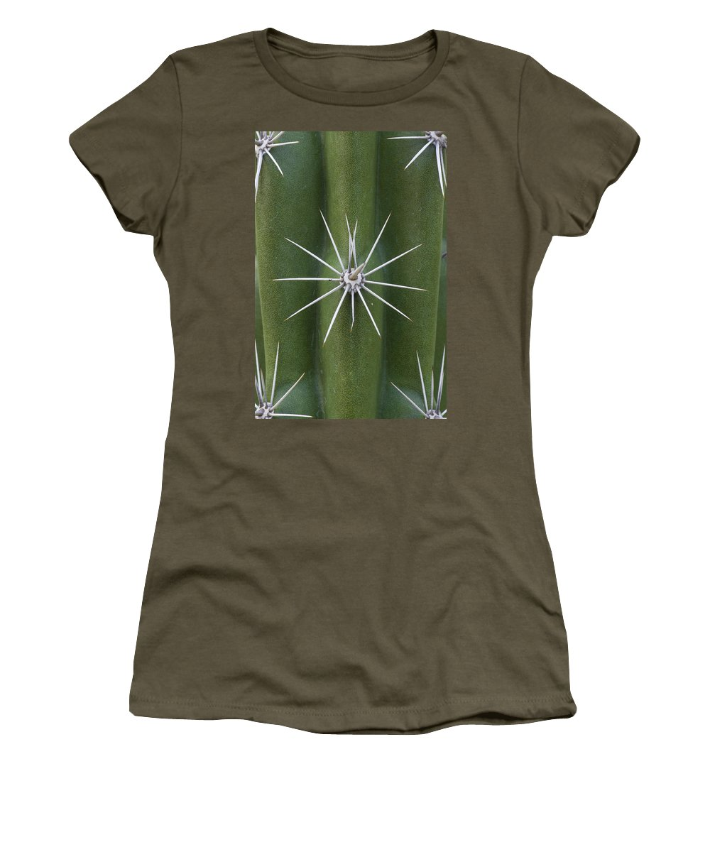 Mp Women's T-Shirt featuring the photograph Cactus Spines, Saguaro National Park by Ingo Arndt
