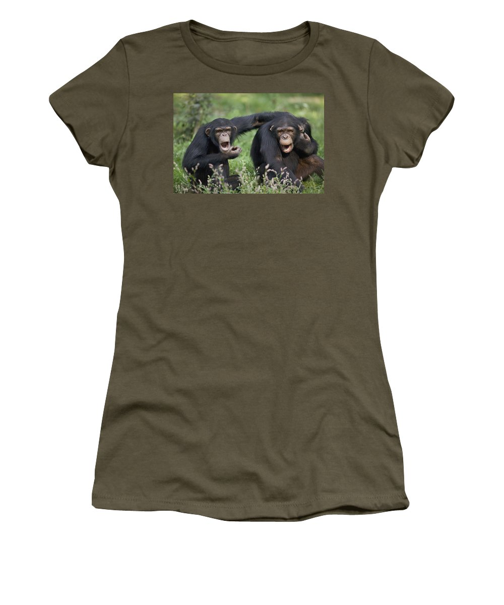 Mp Women's T-Shirt featuring the photograph Chimpanzees Pan Troglodytes Calling by Cyril Ruoso
