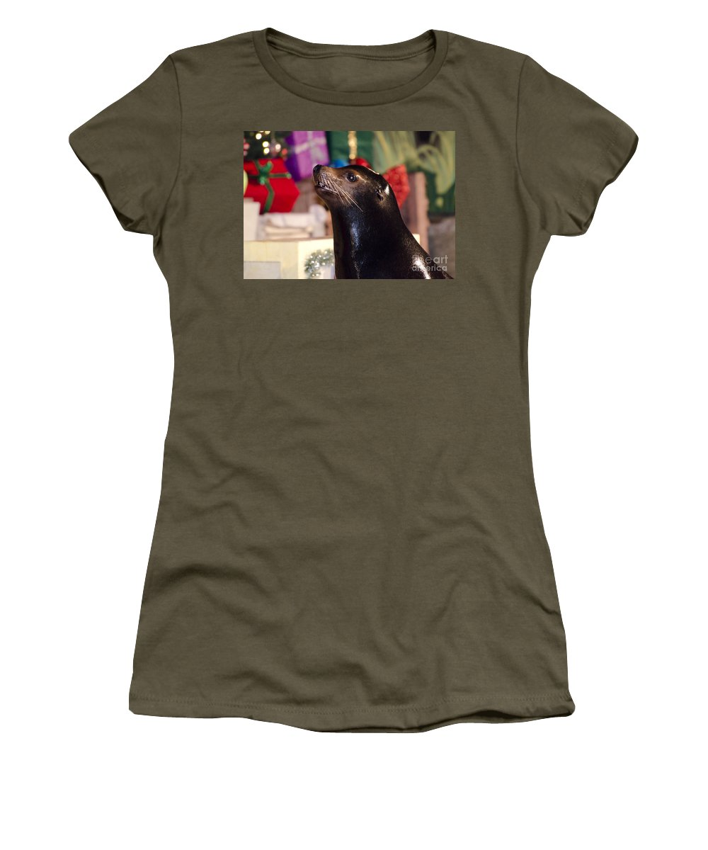 Sea Lion Women's T-Shirt featuring the photograph Christmas Sea Lion by Jim And Emily Bush