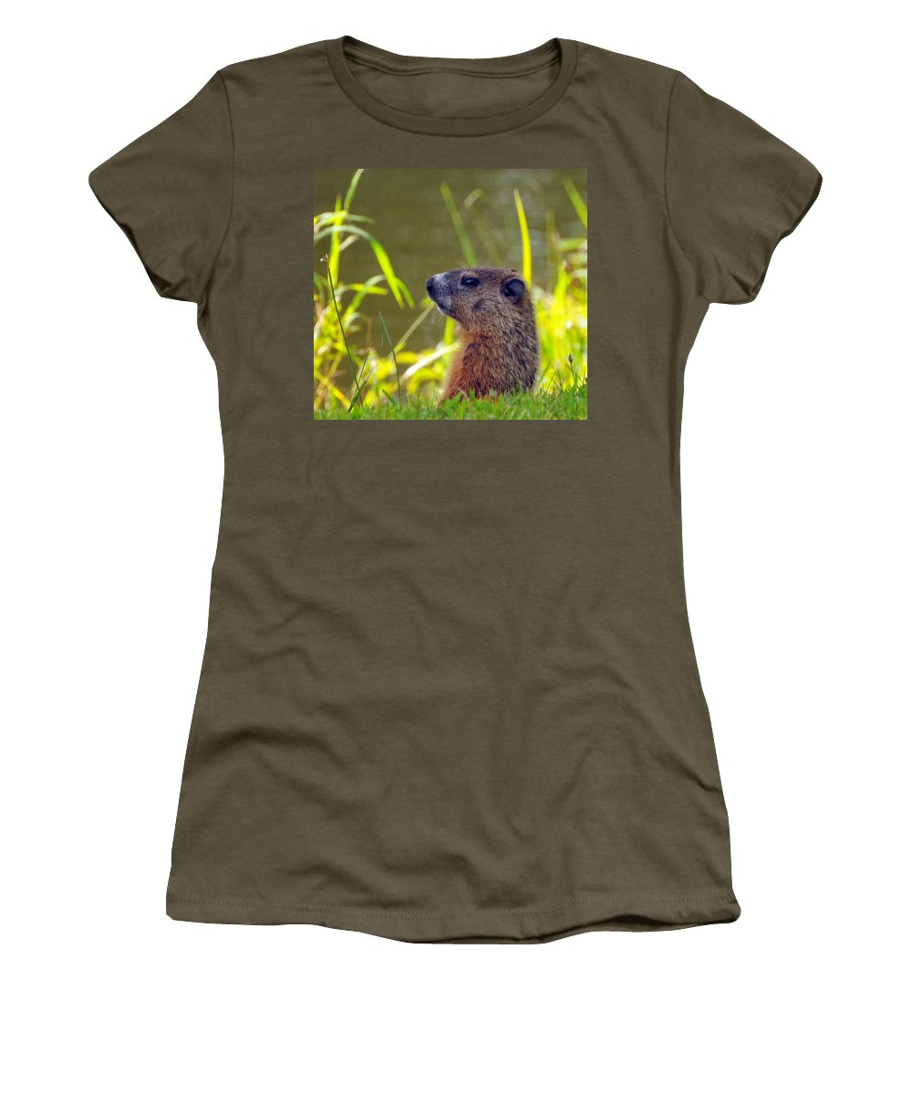 Woodchuck Women's T-Shirt (Athletic Fit) featuring the photograph Chucky Woodchuck by Paul Ward