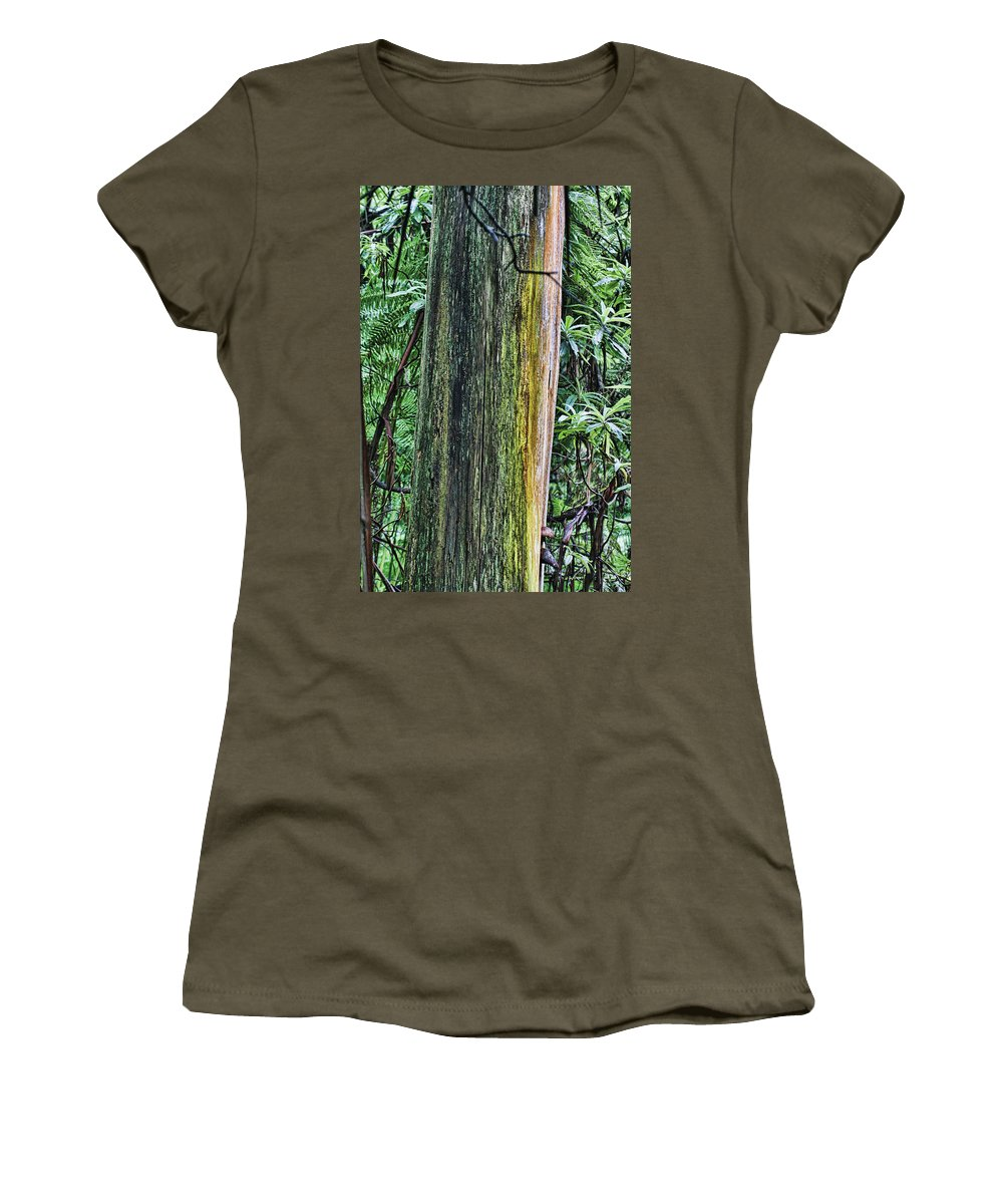 Color Women's T-Shirt (Athletic Fit) featuring the photograph Color Of The Trees by Douglas Barnard