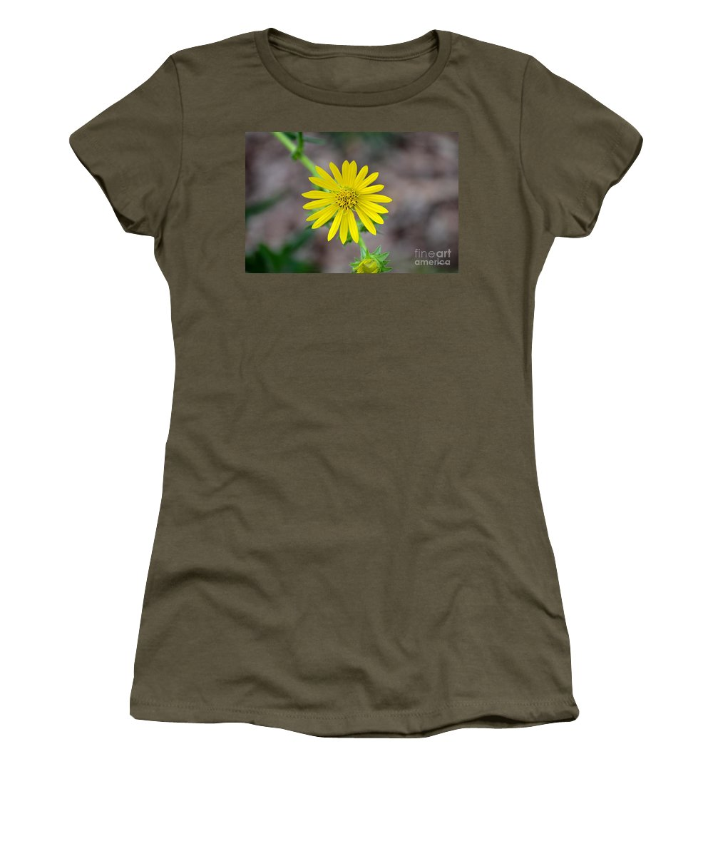 Double Women's T-Shirt featuring the photograph Double Lemon Zested by Maria Urso
