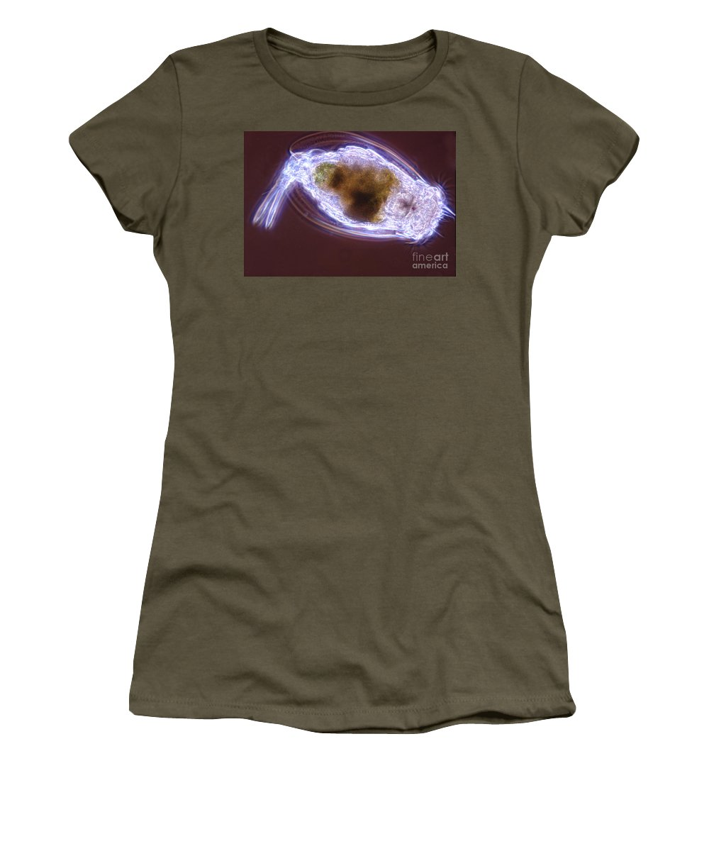 Light Microscopy Women's T-Shirt featuring the photograph Euchlanis by M. I. Walker